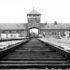 Auschwitz_Bahngleise