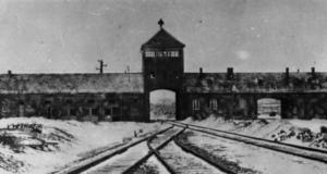 2018-12-07 18_10_11-Anlässlich des 76. Jahrestages des Auschwitz-Erlasses - Google-Suche